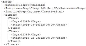 Batch Timer Service Snippet